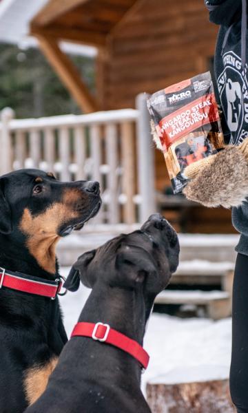 hero dog treats wholesale
